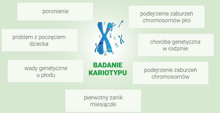 kariotyp-zielone2