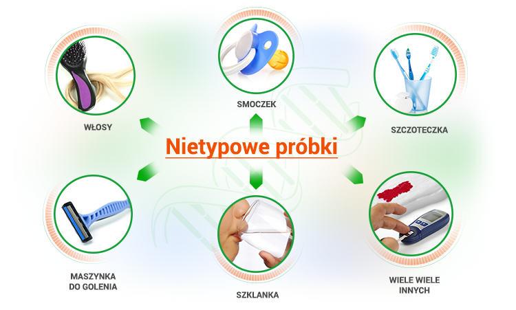 testdna_infografika_750
