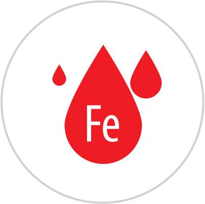 celiakia a anemia, anemia a celiakia, anemia leczenie, anemia przyczyny, anemia test
