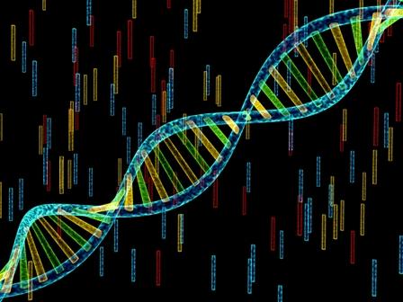 Międzynarodowy Dzień DNA