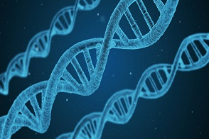 Jak się robi badania genetyczne, Jak się przygotować do badań genetycznych, Kiedy zrobić badania genetyczne, Gdzie najlepiej wykonać badania genetyczne