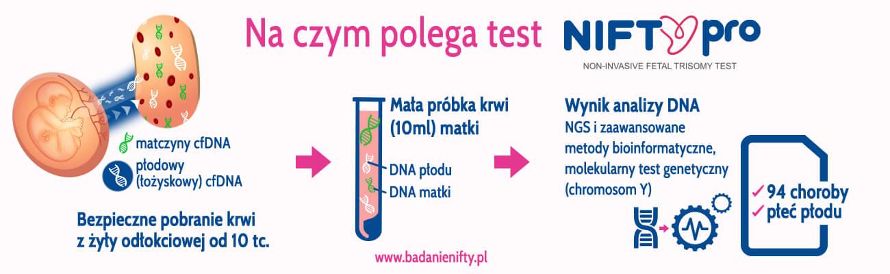 na czym polega test nifty pro